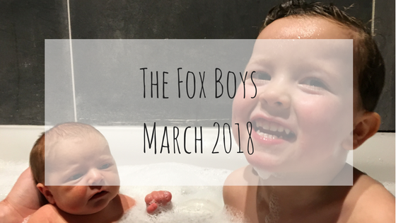 The Fox Boys